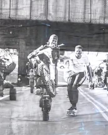 adidas Skateboarding x Hardies