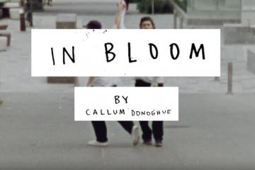 ELEMENT x CALLUM DONOGHUE – IN BLOOM