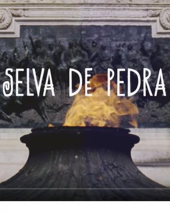 Selva De Pedra /// São Paulo