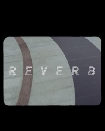 ADIDAS SKATEBOARDING PRESENTS 'REVERB'